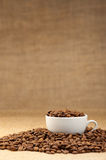 White cup with coffee grains Stock Image