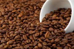 White cup with coffee grains Stock Photography