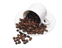 White cup with coffee grains Royalty Free Stock Photo