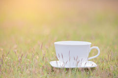 White cup of coffee Stock Images