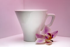 White cup for coffee Royalty Free Stock Photo