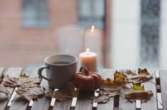 White cup of coffee or tea near a pumpkin and candle. With maple leaves around on a wooden table near a window in rainy day Stock Photos