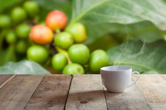 White cup of coffee on wood table Stock Photography