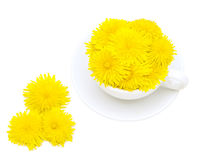 White cup with dandelions. White mug filled with dandelions on a white background Royalty Free Stock Image
