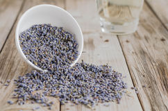 A white cup of dried lavende Royalty Free Stock Photography