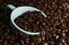 White cup drowned in coffee beans. White Cup drowned in roasted coffee beans Stock Photo
