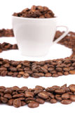 White cup filled with coffee beans Royalty Free Stock Image