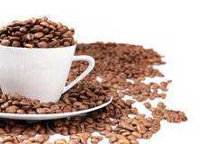 White cup filled with coffee beans Stock Images