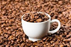 White Cup Filled with Coffee beans Stock Photos