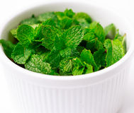 White cup of fresh green mint leaves on white background Stock Images