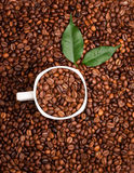 White cup full of coffee beans on Roasted Coffee Beans backgroun Royalty Free Stock Photo