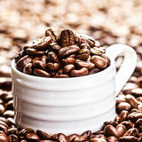 White Cup full of roasted coffee beans on heap of coffee beans b Stock Image
