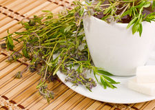 White cup of herbal tea. The cup of herbal tea with thyme Stock Image