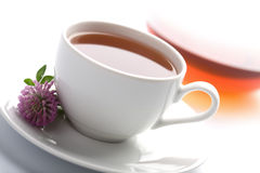 White cup of herbal tea and teapot Stock Image