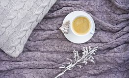 White cup of hot aromatic coffee with cookie in the form of fir royalty free stock photography