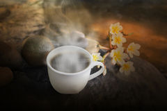 White cup of hot black coffee on waterfall rock with flower and Royalty Free Stock Images