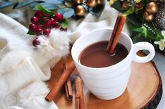 A White Cup of Hot Chocolate. A white cup of hot choclate with cinnamon stick stock photography