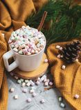 White Cup of Hot Chocolate, Yellow Plaid, Cone, Pine Branch, Fir Tree, Colorful Marshmallows stock images