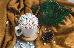 White Cup of Hot Chocolate, Yellow Plaid, Cone, Pine Branch, Fir Tree, Colorful Marshmallows stock image
