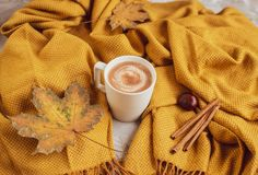 White Cup of Hot Chocolate, Yellow Plaid, Leaves, Gray Background, Autumn Concept stock images