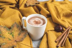 White Cup of Hot Chocolate, Yellow Plaid, Leaves, Gray Background, Autumn Concept stock photo