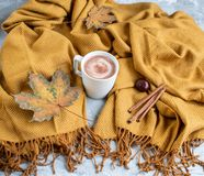 White Cup of Hot Chocolate, Yellow Plaid, Leaves, Gray Background, Autumn Concept royalty free stock image