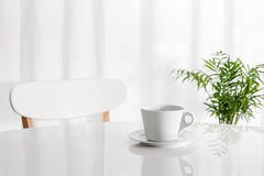 White cup on the kitchen table. With green plant in the background Royalty Free Stock Photos