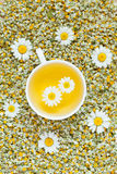 White cup of natural chamomile herbal tea. Dried Royalty Free Stock Photo
