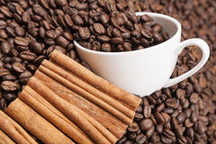 White cup om heap of coffee beans horisontal Stock Image