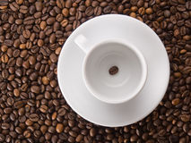 A white cup with one coffee bean Royalty Free Stock Photo