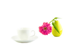 White cup and pink zinnia Stock Photography