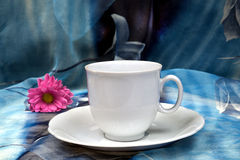 White cup with purple gerbera on a blue backdrop Stock Photo