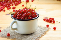 White cup of red currants on wooden table. Stock Photos