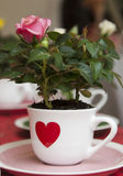 White cup with red heart and pink rose Royalty Free Stock Image