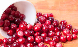 White cup from spilling out of it cranberries on a wooden background. Scattered from a white cup closeup cranberries royalty free stock image