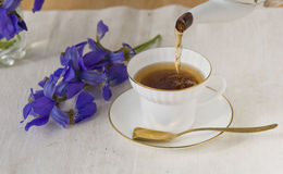 White cup of tea. White cup from thin porcelain with a gold strip and the gold spoon on a background of dark blue colors of an iris stock photo