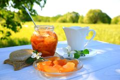 A white cup of tea and apple jam royalty free stock photography
