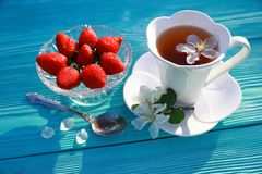 A white cup of tea with apple flowers and strawberry stock image