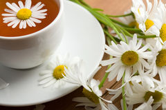 White cup of tea and camomile flowers stock images