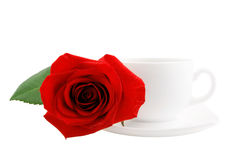 White cup of tea or coffee and red rose isolated Stock Images