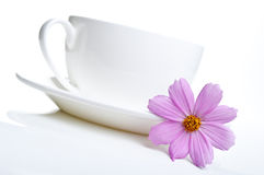 White cup of tea and flowers Stock Images
