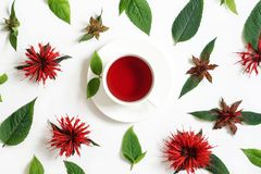 White cup of tea surrounded by the bergamot leaves and flowers. Photo royalty free stock image