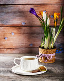 White Cup of tea on the table. Pot of flowers in the background Stock Photography
