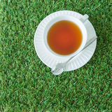 The white cup tea from top view Royalty Free Stock Image