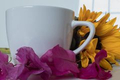 White cup wtih sunflower and pink flowers stock photos