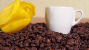 White cup and yellow flower on coffee beans. A small white mug in coffee beans. Yellow tulip on coffee beans. stock video