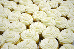 White cupcakes, background. Picture of aWhite cupcakes, background royalty free stock photos
