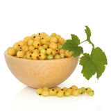 White Currant Fruit Royalty Free Stock Images