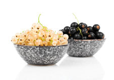 White currant fruit in a bowl Royalty Free Stock Image