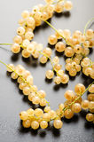 White currant fruits Royalty Free Stock Photography